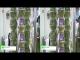[3D] 水耕栽培レタス ブーケレタス – 有限会社葉っぱや