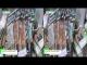 [3D] オーガニックコットンマスク ネオパッチマスク – touta.