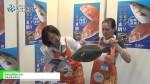 [ジャパン・インターナショナル・シーフードショー 2015] みかん育ちヒラメ –  幸進水産合同会社