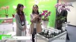 [2016台湾国際らん展] ランの生産のご紹介 – Young Home Orchid Co., Ltd.