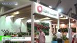 [総務・人事・経理ワールド 2016] 植物と五感に寄り添う新しいオフィス空間 – 大和リース株式会社