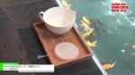 [JAPAN DIY HOMECENTER SHOW 2016] ジャペルのプロデュース「金魚すくい」 – ジャペル株式会社
