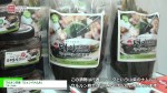 [Food Week Korea 2016] ウルルン島産「ミョンイナムル」 – ウルンhub